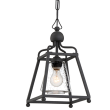 Crystorama SYL-2280-SD-BF - Libby Langdon for Crystorama Sylvan 1 Light Black Forged Outdoor Pendant