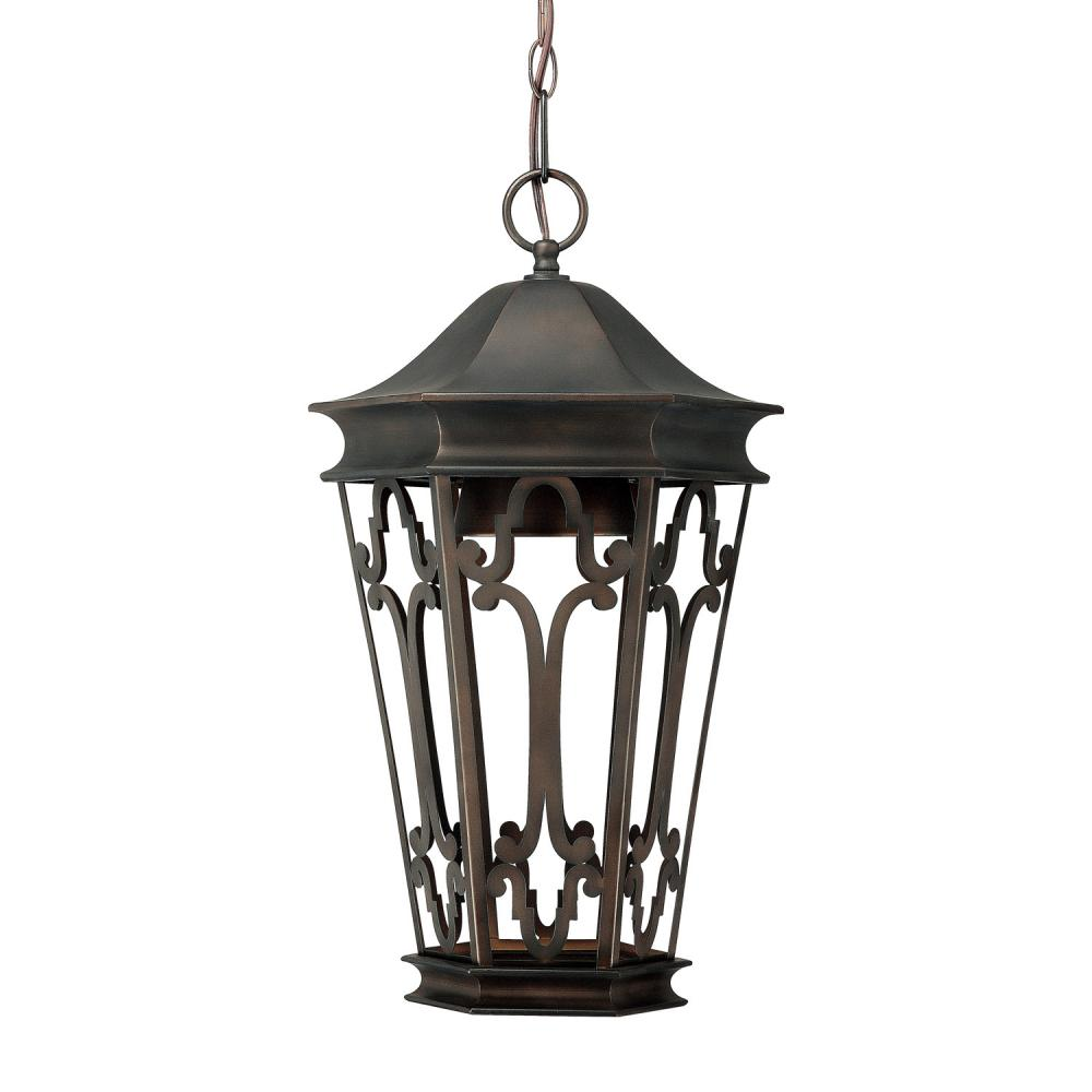 Lighting Etc. in North Richland Hills, Texas, United States, Capital 9446OB, 1 Light Outdoor Hanging Lantern/Dark Sky, Dark Sky