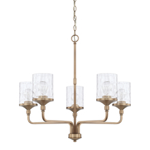 Capital 428851AD-451 - 5 Light Chandelier